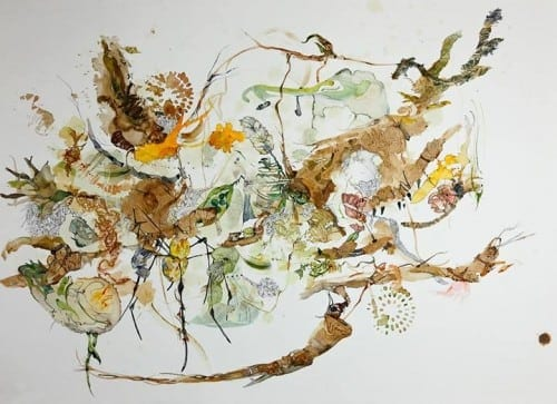 Pam Rogers: Amazing Rare Things, graphite, ink, watercolor and soil, mineral and plant pigments including Mulberry tree and saffron.