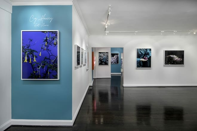 gallery snap april 2021