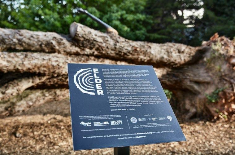 Freedom Park installation ELDER June 2020