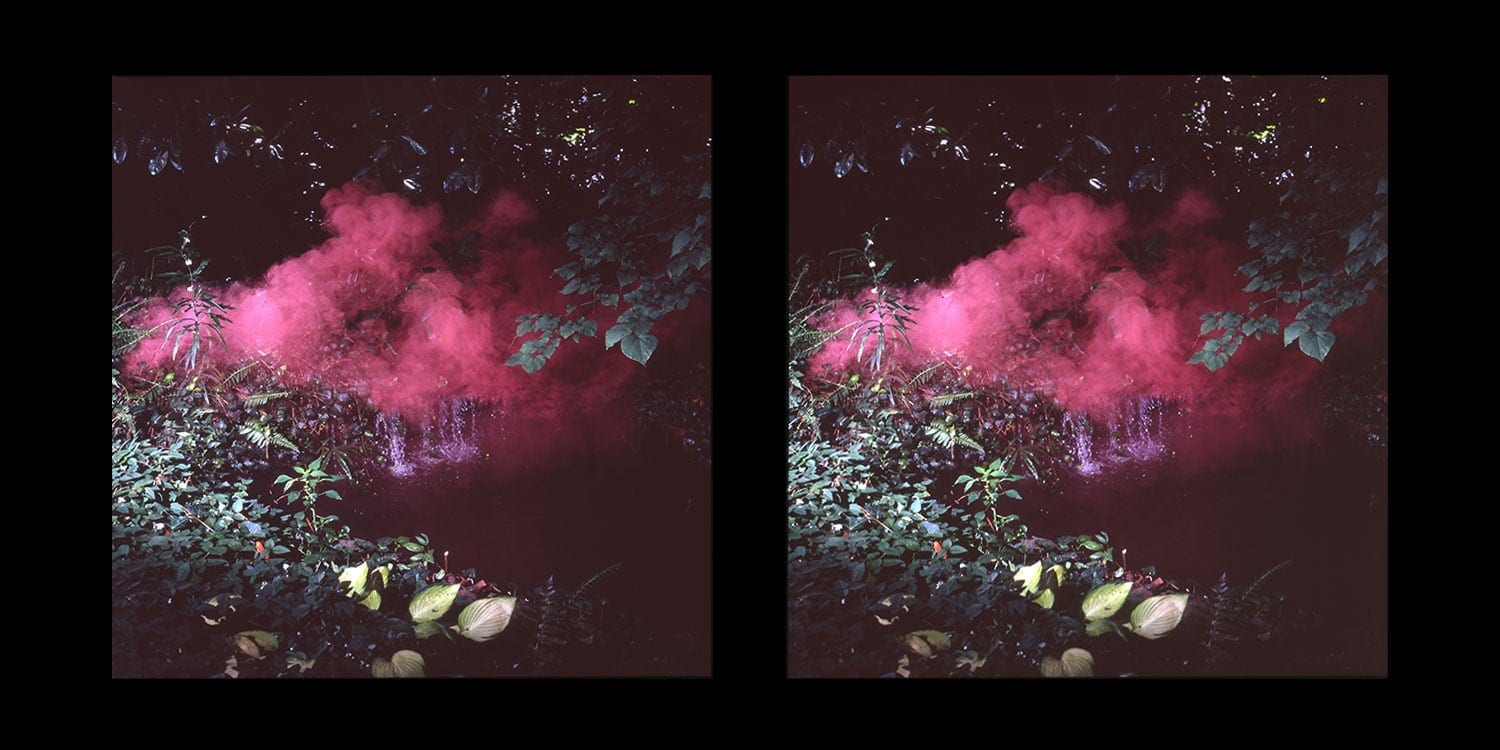 "Peter Bahouth: ""Field Experiment."" Stereoscopic film. Image courtesy Swan Coach House Gallery."