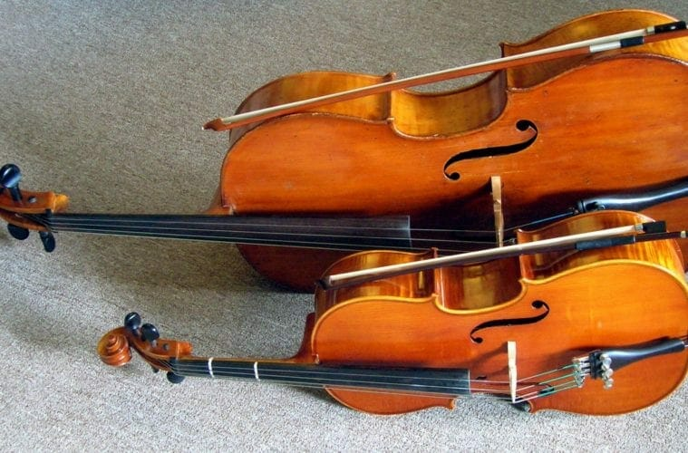 La cellule et le violon.