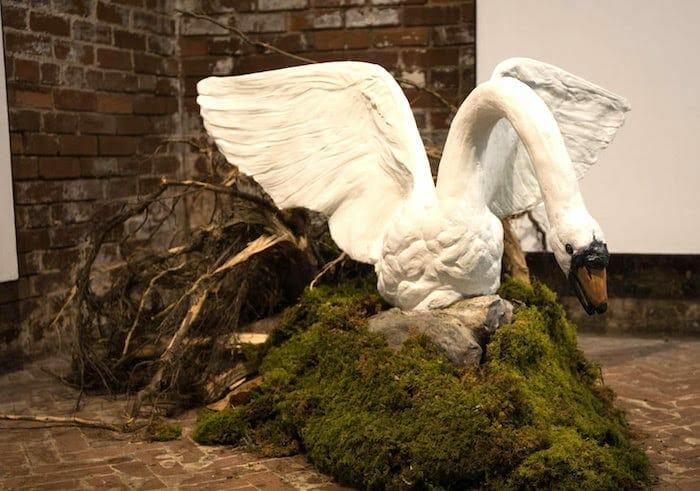 Leda as the Swan in Hortphilia.