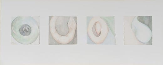 Susan Cofer:The Fruit Desired to Make One Wise, 1987–89 Painted wood, basswood, and colored pencil on paper 35 1/4 x 40 x 16 inches.