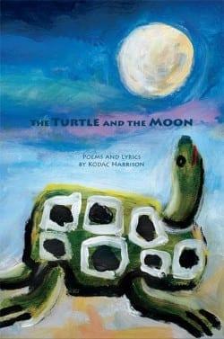 Turtle Book Cover