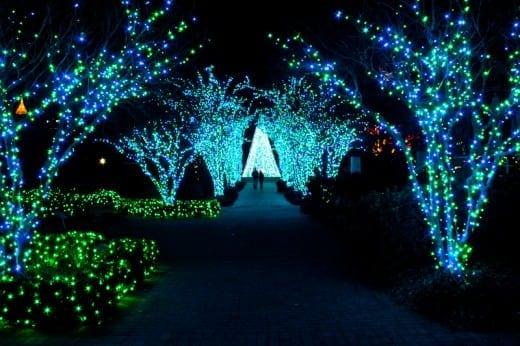 gardenlights-32