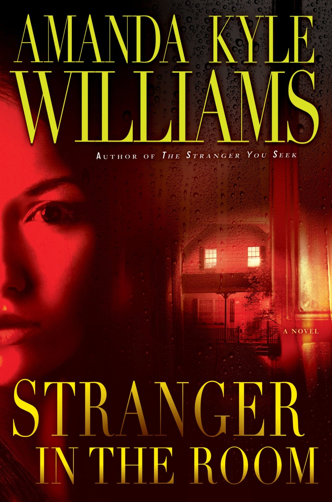 Stranger on the Room by Amanda Kyle Williams